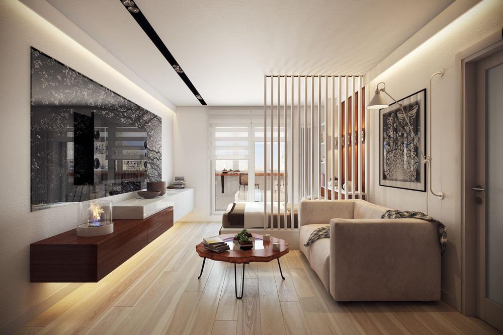 интерьер однокомнатной квартиры с перегородкой